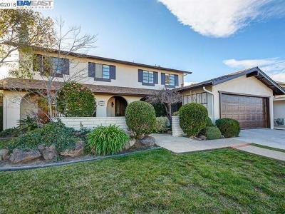 Pleasanton Single Family Home New: 4874 Drywood St