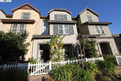 San Leandro Single Family Home New: 607 Heather Glenn Ln
