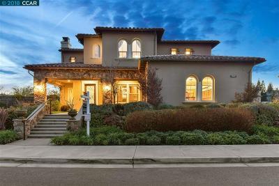 Alamo, Danville, San Ramon, Dublin, Pleasanton, Livermore Single Family Home New: 247 Weber Lane