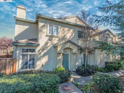 Pleasanton Condo/Townhouse New: 4165 Cortina Ct
