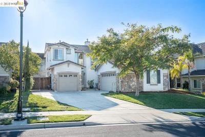 Brentwood Single Family Home New: 713 Flemish Ct