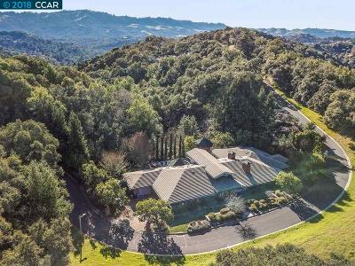 Orinda Single Family Home For Sale: 15 Orinda View Road