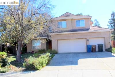 Antioch Single Family Home For Sale: 1932 Medicine Mountain Ct
