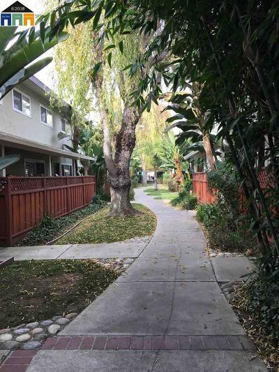 San Leandro Rental For Rent: 740 Fargo Ave #6