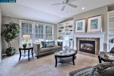 Walnut Creek Single Family Home For Sale: 2203 Brampton Rd