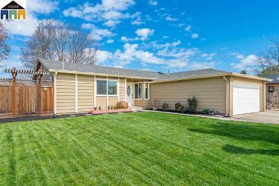Pleasanton Single Family Home New: 4139 Alvarado Street