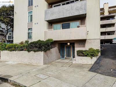 Oakland Condo/Townhouse New: 280 Park View Ter #304