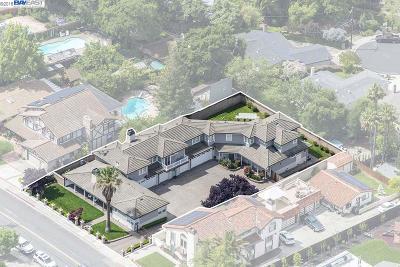 Pleasanton Single Family Home New: 459 Adams Way