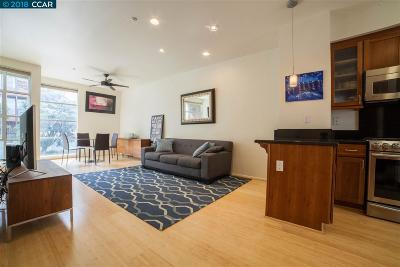 Emeryville Condo/Townhouse For Sale: 1328 Powell St
