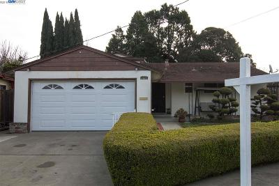 Hayward Single Family Home New: 28068 Dickens Ave