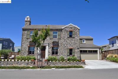 San Ramon Single Family Home New: 427 Sprucemoor Ct
