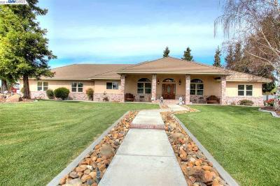 Manteca Single Family Home For Sale: 9885 E Louise Ave