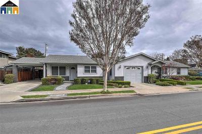 Santa Clara County Single Family Home New: 515 W Iowa