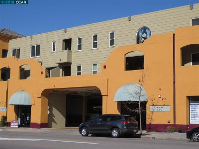 Albany Condo/Townhouse For Sale: 727 San Pablo Ave #221