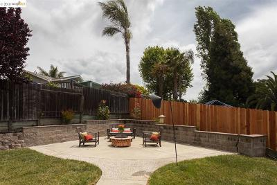 San Leandro Single Family Home For Sale: 1968 Manchester Rd
