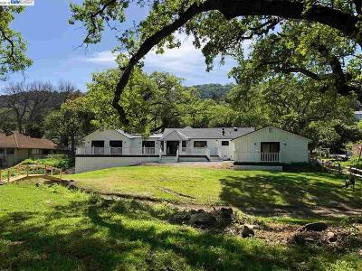 Pleasanton Single Family Home For Sale: 7402 Foothill Road