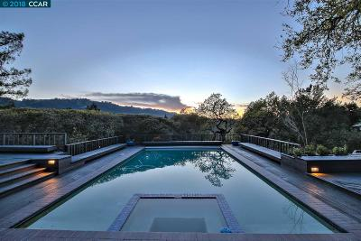 Orinda Single Family Home For Sale: 399 Camino Sobrante