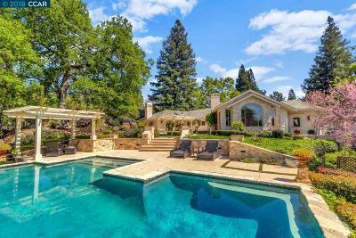 Alamo Single Family Home For Sale: 1812 Piedras Cir