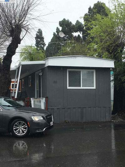 San Leandro Mobile Home New: 2399 E 14th Street