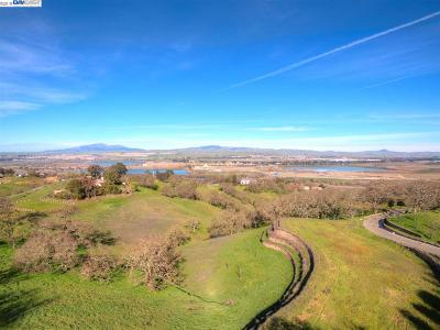 Pleasanton Residential Lots & Land For Sale: #6 Winding Oaks Dr
