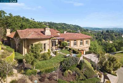 Alamo Single Family Home For Sale: 243 Michelle Ln