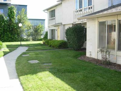 Fremont Condo/Townhouse New: 4427 Escala Ter