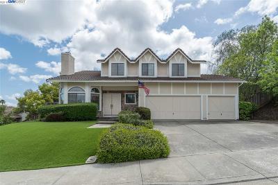 Pleasanton, Livermore, Dublin Single Family Home New: 11585 Silvergate Dr