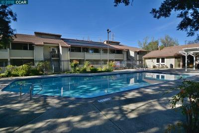 Concord Rental New: 1505 Kirker Pass Rd #221