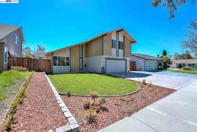 Fremont Single Family Home New: 145 Tonopah Dr