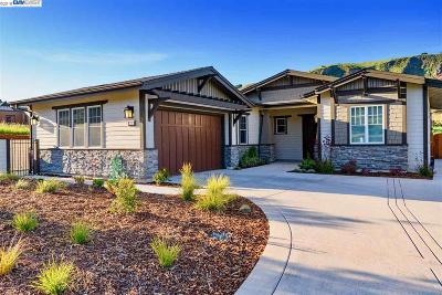 Dublin, Pleasanton, Alamo, Danville, Orinda, San Ramon Single Family Home New: 11 Paintbrush Lane