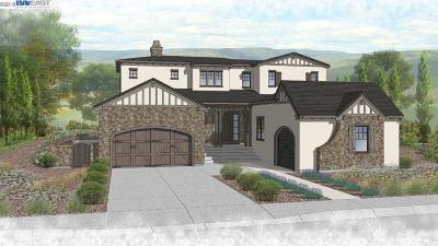 Dublin, Pleasanton, Alamo, Danville, Orinda, San Ramon Single Family Home New: 68 Windy Creek Way