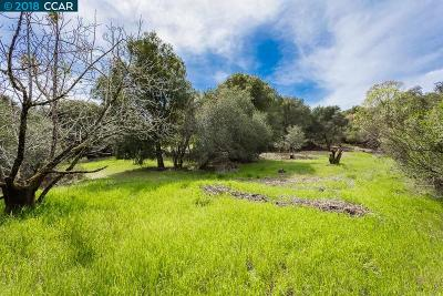 Orinda Residential Lots & Land For Sale: Adobe Lane