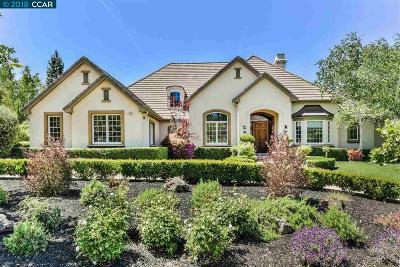 Pleasanton Single Family Home New: 3529 Villero Ct
