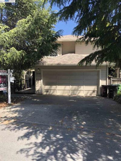 Hayward Single Family Home New: 25640 University Ct