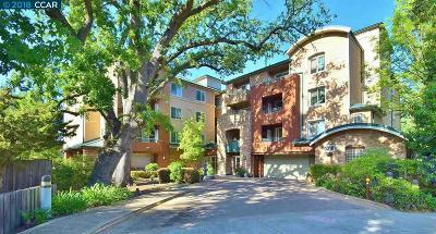 Walnut Creek Condo/Townhouse Price Change: 1310 Creekside Drive #201