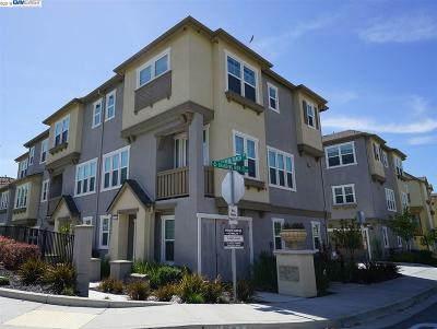 Dublin Condo/Townhouse Pending Show For Backups: 3644 Branding Iron Pl