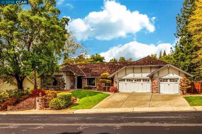 Alamo Single Family Home New: 1449 Emmons Canyon Dr