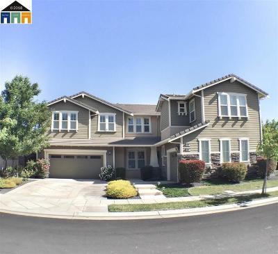 Mountain House Single Family Home New: 701 W Woodside