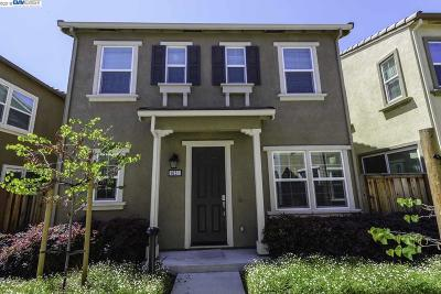Hayward Single Family Home For Sale: 1651 Sylvia St