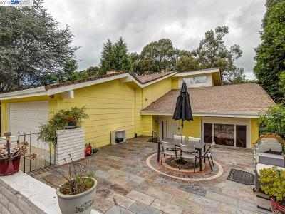 Hayward Single Family Home For Sale: 24790 Joe Mary Ct
