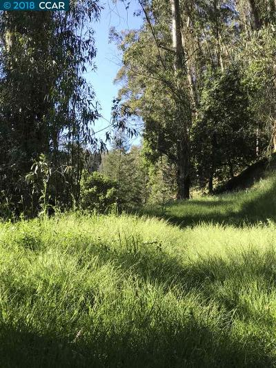Oakland Residential Lots & Land For Sale: Thornhill Dr