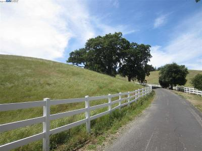 Sunol Residential Lots & Land For Sale: 3333 Little Valley Road Lot B