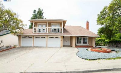 Hayward Single Family Home For Sale: 27997 El Portal Dr