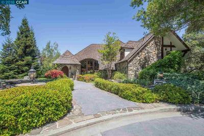 Danville Single Family Home For Sale: 494 Montcrest Pl