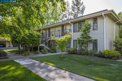 Walnut Creek Condo/Townhouse For Sale: 1257 Singingwood Ct. #3