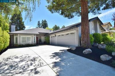 San Ramon Single Family Home For Sale: 4025 Canyon Crest Road West