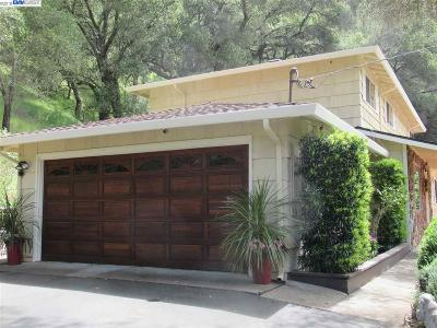Sunol Single Family Home For Sale: 1313 Kilkare Rd
