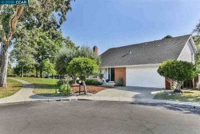 Walnut Creek Single Family Home For Sale: 606 Arrowsmith Ct