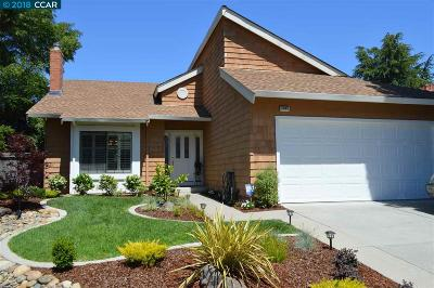Concord Single Family Home For Sale: 5095 Murchio Dr.