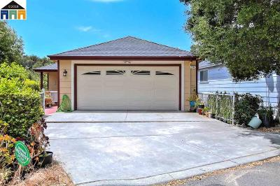 Hayward Single Family Home For Sale: 25472 Modoc